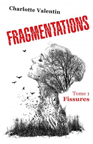 Fragmentations