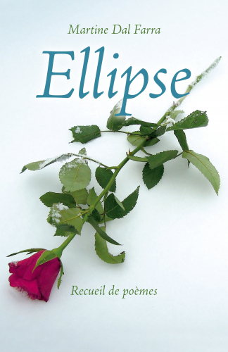 ellipse-1