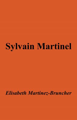 sylvain-martinel