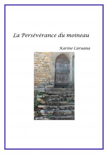 la-perseverance-du-moineau