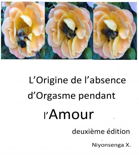 L'Origine de l'absence d'Orgasme pendant l'Amour