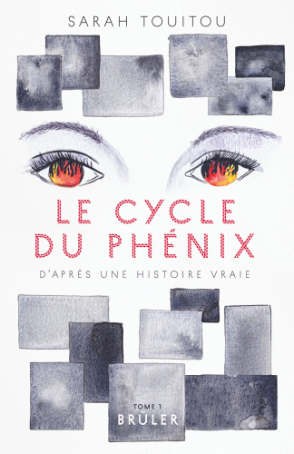 le-cycle-du-phenix