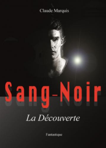 LSang-Noir