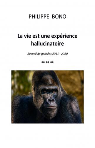 La vie est une expérience hallucinatoire